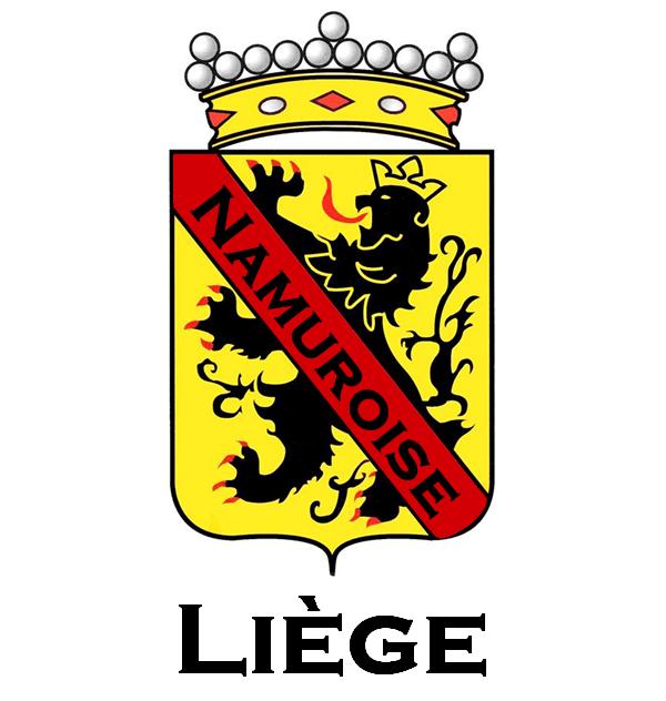 Logo Namuroise de Liège